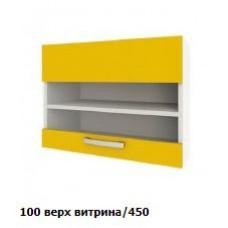 100 верх витрина/450